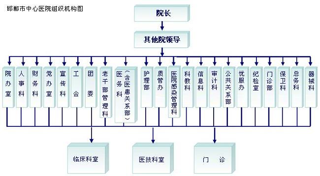 邯郸市中心医院组织机构图